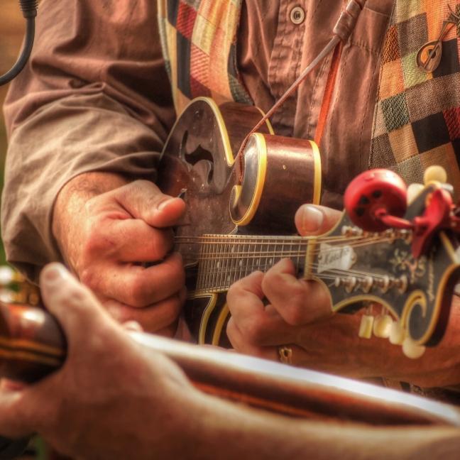 mandolin musician