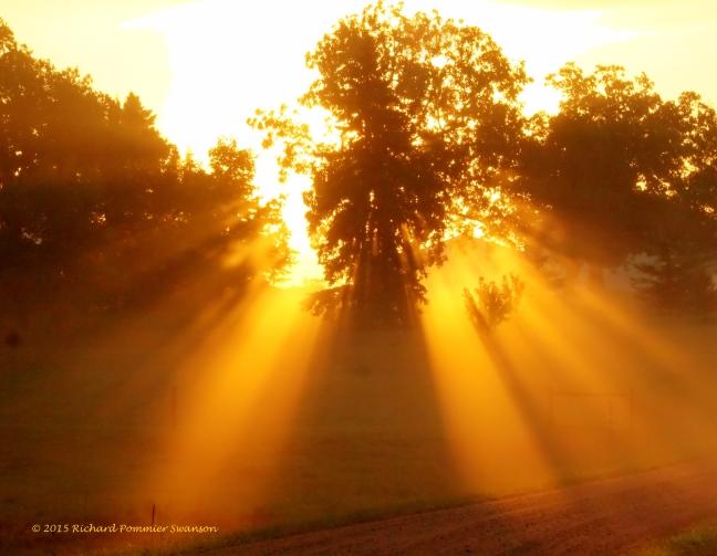 golden rays