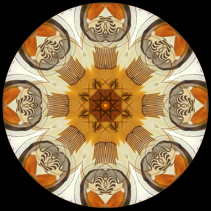 Chicago Mandala