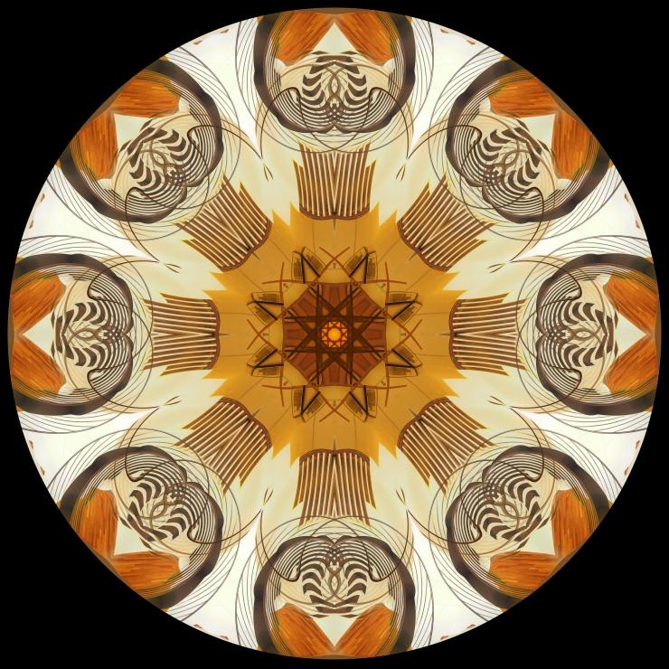 Chicago Mandala