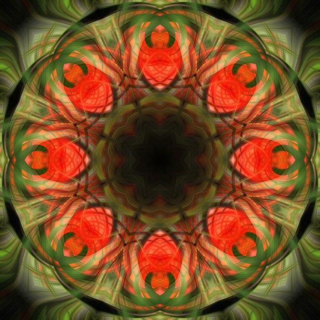 Flower Mandala Final