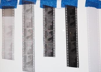 Film Negative Comparison