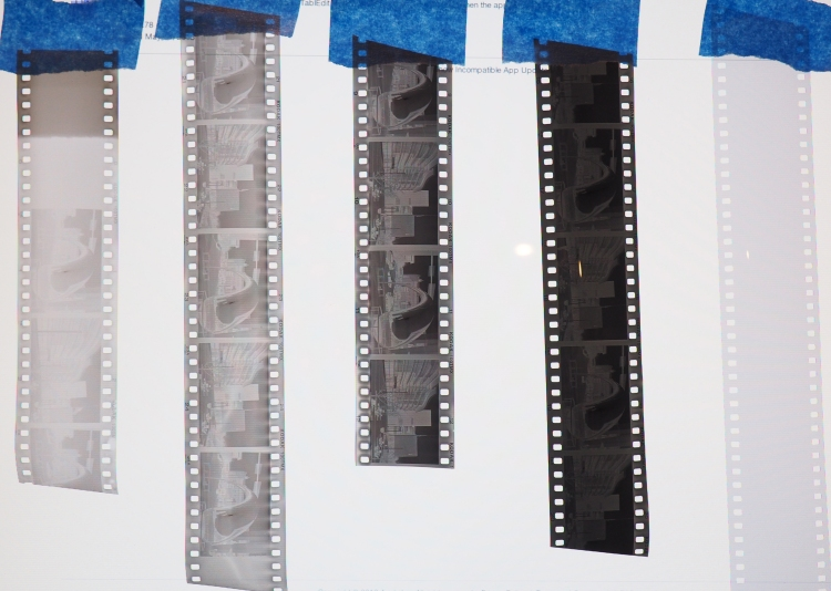 Film Negative Comparison